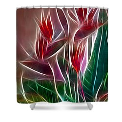 Bird Of Paradise Fractal Shower Curtain by Peter Piatt