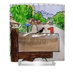 Bird On The Mailbox Sketchbook Project Down My Street Shower Curtain by Irina Sztukowski