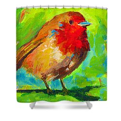 Birdie Bird - Robin Shower Curtain