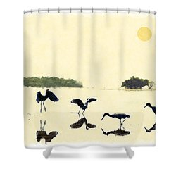 Shower Curtain featuring the photograph birds feeding in the Everglades by Dan Friend