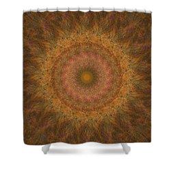 Birthing Mandala 18 Shower Curtain by Rhonda Barrett