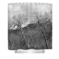 Black And White Aspen Shower Curtain