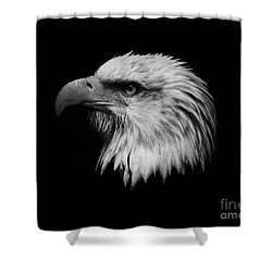 Shower Curtain featuring the photograph Black And White Eagle by Steve McKinzie
