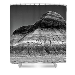 Black And White Painted Desert Shower Curtain by Bob and Nadine Johnston