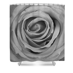 Black And White Spiral Rose Petals Shower Curtain by James BO  Insogna