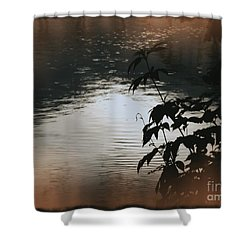 Black Bamboo Shower Curtain by Angela Wright