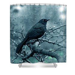 Black Bird On Branch Shower Curtain by Jill Battaglia