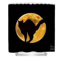 Black Cat Moon Shower Curtain by Al Powell Photography USA