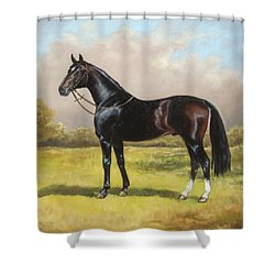 Black English Horse Shower Curtain