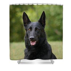 Black German Shepherd - Storm Shower Curtain by Sandy Keeton