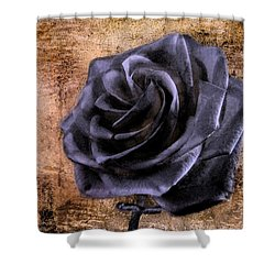 Black Rose Eternal   Shower Curtain