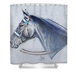 Black Tennessee Walker Shower Curtain by Carrie L Lewis
