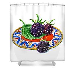 Blackberries Shower Curtain by Irina Sztukowski