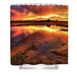 Blazing Sky Shower Curtain by Carlos Caetano