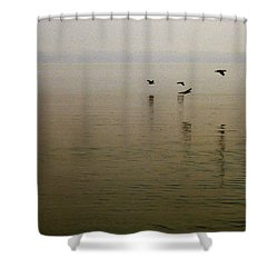 Shower Curtain featuring the photograph Bliss by Clayton Bruster