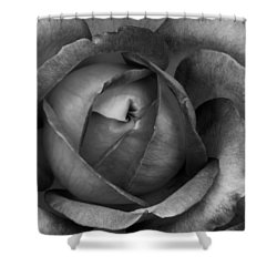 Shower Curtain featuring the photograph Blooming 2 by Michelle Joseph-Long