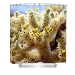 Blooming Cholla Shower Curtain