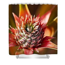 Blooming Pineapple Shower Curtain by Ron Dahlquist
