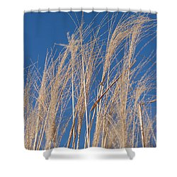Shower Curtain featuring the photograph Blowing In The Wind by Barbara McMahon