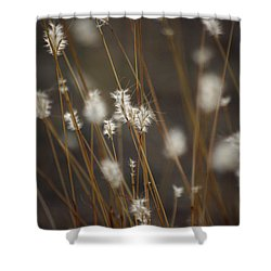Shower Curtain featuring the photograph Blowing In The Wind by Vicki Pelham