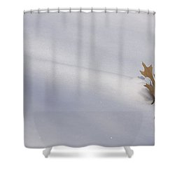 Blown Snow And Oak Leaf Shower Curtain