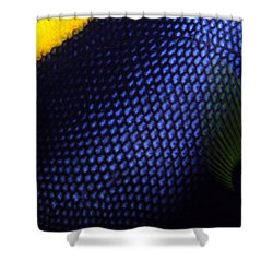 Blue And Yellow Scales Shower Curtain