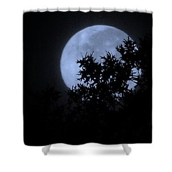 Blue August Shower Curtain