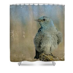 Blue Bird Shower Curtain by Teresa Zieba