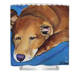 Blue Blanket Shower Curtain by Pat Saunders-White
