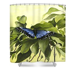 Blue Butterfly Of Branson Shower Curtain