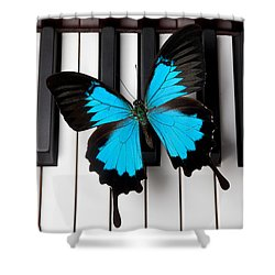 Blue Butterfly On Piano Keys Shower Curtain by Garry Gay