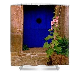 Blue Door And Pink Hollyhocks Shower Curtain