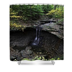 Blue Hen Falls Shower Curtain by Dale Kincaid