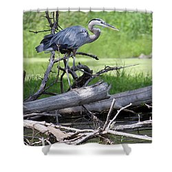 Shower Curtain featuring the photograph Blue Heron At The Lake by Debbie Hart