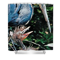 Blue Heron Family Shower Curtain by Lydia Holly