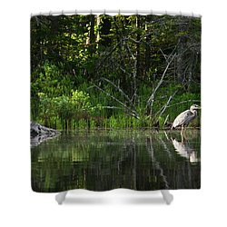 Blue Heron Long Pond Wmnf Shower Curtain