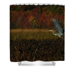 Blue Heron Mud Pond Dublin Shower Curtain