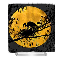 Shower Curtain featuring the photograph Blue Heron On Roost by Dan Friend
