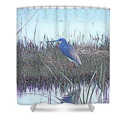 Shower Curtain featuring the digital art Blue Heron Sabine Nwr La by Lizi Beard-Ward