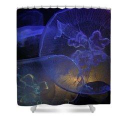 Blue Jelly Dream Shower Curtain