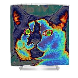 Blue Kitty Shower Curtain