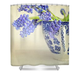 Blue Muscari Flowers In Blue And White China Cup Shower Curtain