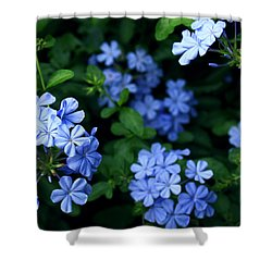 Blue Plumbago Shower Curtain