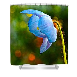 Blue Poppy Dreams Shower Curtain by Byron Varvarigos