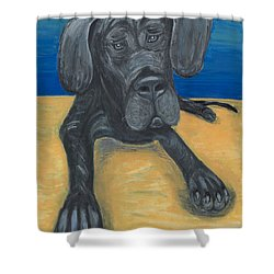 Blue The Great Dane Pup Shower Curtain by Ania M Milo