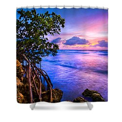 Blue Tide Shower Curtain by Debra and Dave Vanderlaan