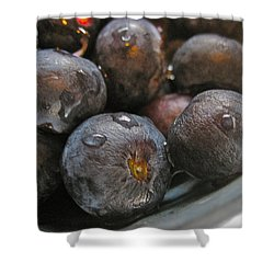Shower Curtain featuring the photograph Blueberries  by Bill Owen