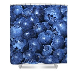 Blueberries With Waterdrops Shower Curtain by Sharon Talson