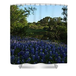 Shower Curtain featuring the photograph Bluebonnets At The Pond by Susan Rovira