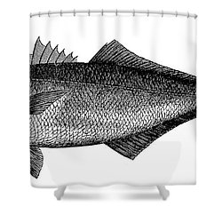 Bluefish Shower Curtain by Granger